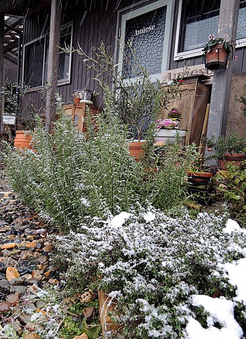 2014年1月18日新潟市秋葉区の雪